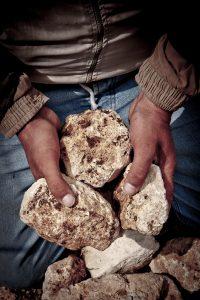 Bargylus Rocks in Hands