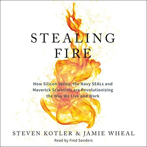 Stealing Fire: How Silicon Valley, the Navy SEALs, and Maverick Scientists Are Revolutionizing the Way We Live and Work Book Cover